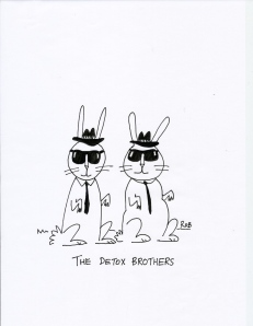 The Detox Brothers
